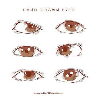 Paczka oczy szkiców