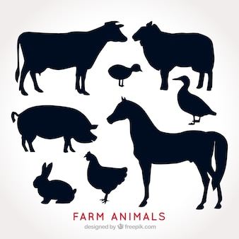 Paczka sylwetki zwierząt gospodarskich
