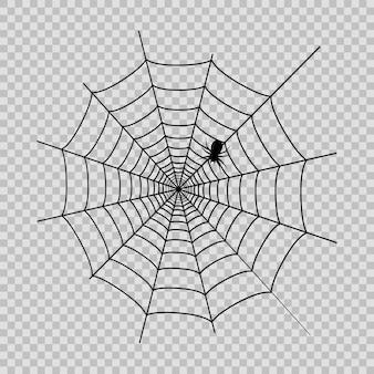 Pajęczyna z czarnym pająkiem na halloween na transaprent tle. wektor.
