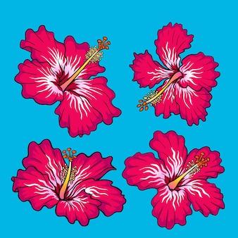 Pakiet czerwonych kwiatów hibiskusa do kolekcji