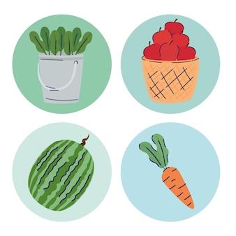 Pakiet czterech ilustracji produktów farmy owoców i warzyw