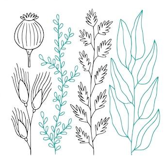 Pakiet dekoracyjnych gałązek