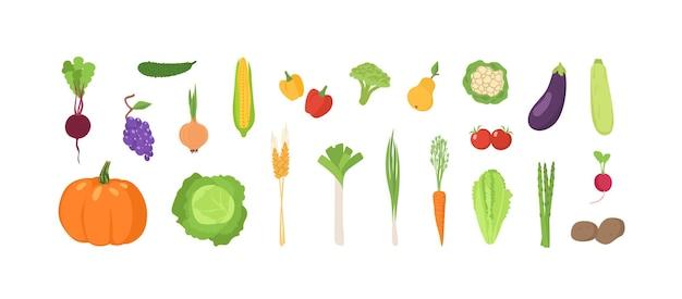Pakiet dojrzałych świeżych organicznych owoców i warzyw na białym tle