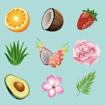 Pakiet dziewięciu owoców tropikalnych i roślin ustawić ikony na niebieskim tle ilustracji