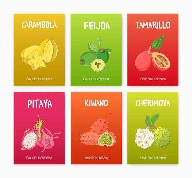 Pakiet kolorowych ilustracji ze smacznymi, dojrzałymi soczystymi egzotycznymi owocami tropikalnymi, całymi i pokrojonymi w plasterki