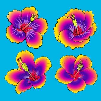 Pakiet kwiatów hibiskusa tahitańskiego fioletu do kolekcji