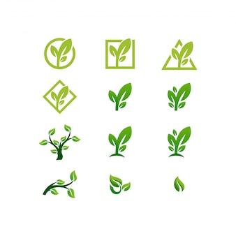 Pakiet logo z liści
