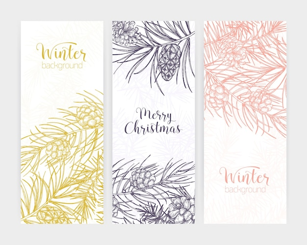 Pakiet pionowych banerów sezonowych lub tła z gałęziami i szyszkami sosny