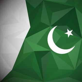 Pakistan polygon tło