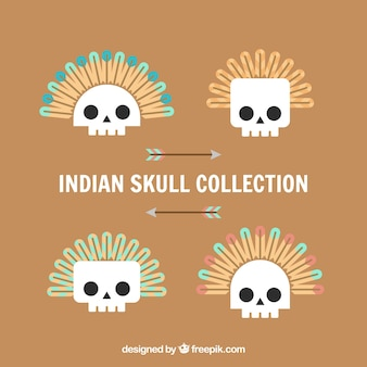 Pakunek indyjskich czaszek w płaskim kształcie
