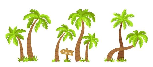 Palmy kokosowe w zestawie kreskówka płaski wyspa. tropikalne palmy natura element projektu ręcznie rysowane drzewo z drewnianym wskaźnikiem