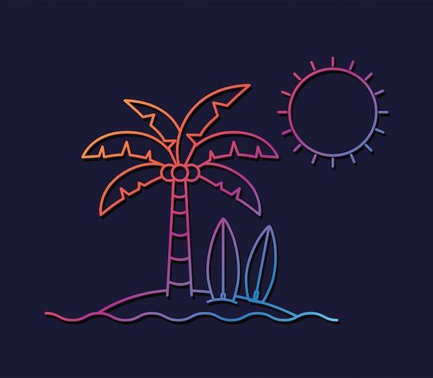 Palmy w sezonie letnim