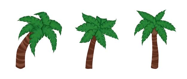 Palmy z liści i kokosów ustawione na białym tle