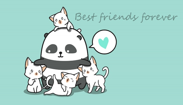 Panda i koty.