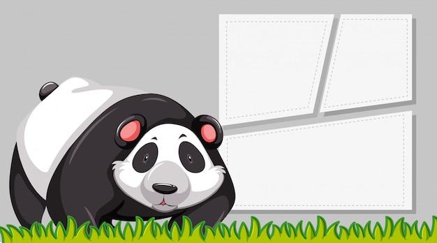 Panda na pustej notatce
