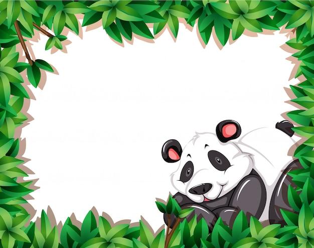 Panda w ramce natury