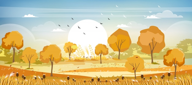 Panorama widok wsi krajobraz w jesieni