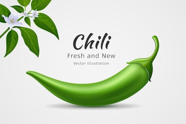 Papryczki chili zielone świeże z liśćmi i kwiatem chili