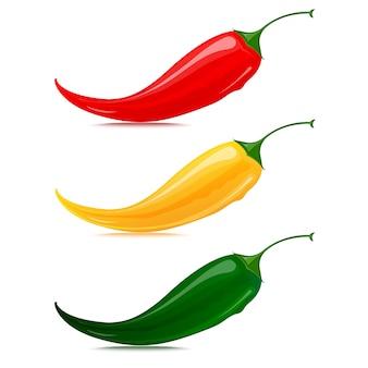 Papryka chili wektor zestaw na białym tle