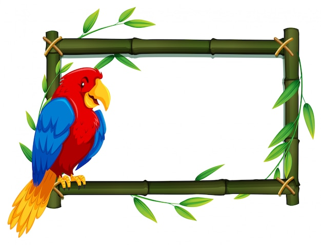 Papuga na bambusowej ramie