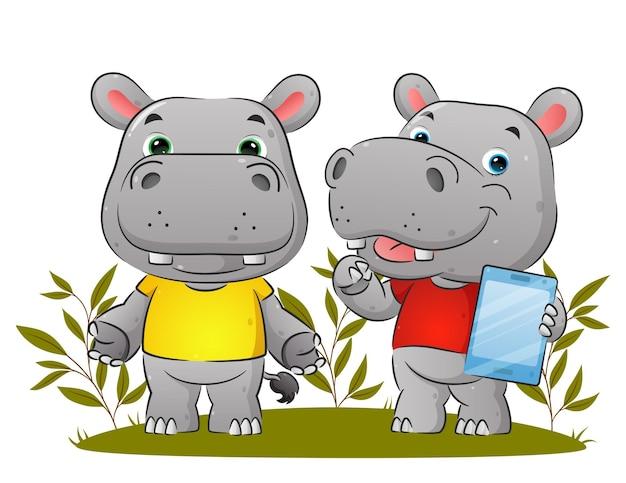 Para hipopotamów trzyma tablet i wyjaśnia coś ilustracyjnego