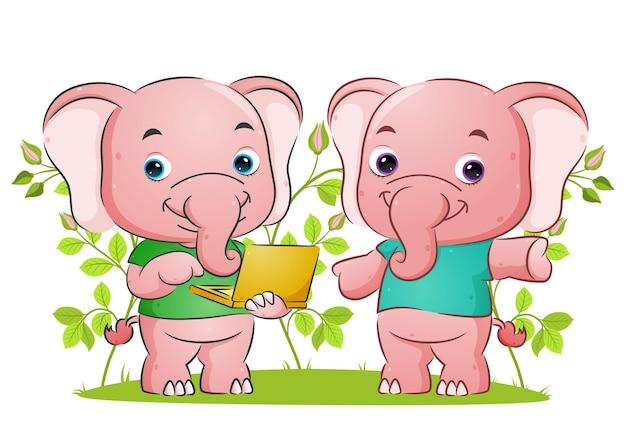 Para słoni wyjaśnia i trzyma ilustrację przenośnego laptopa