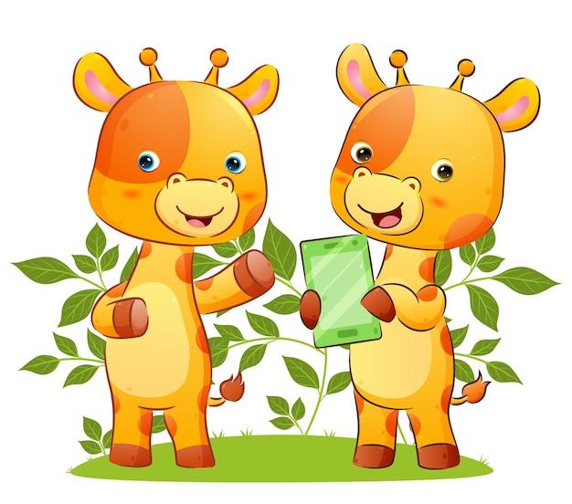 Para żyraf pokazuje tablet z nowym wydaniem na ilustracji w parku park