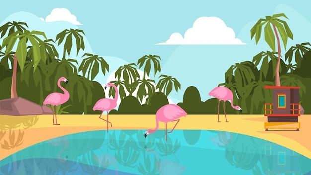 Park flamingów. różowe ptaki egzotyczne na jeziorze