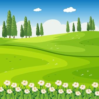 Parkowa scena plenerowa z polem kwiatowym i pustą łąką
