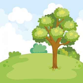 Parkowy krajobraz z drzewną sceną