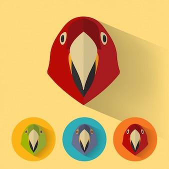 Parrot projektuje kolekcję