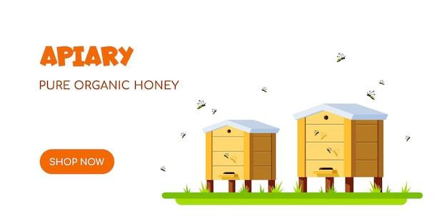 Pasieka z pszczołami. koncepcja pszczelarstwa