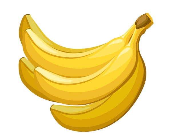 Pęczek żółtych bananów jadalnych owoców tropikalnych jagoda płaska ilustracja