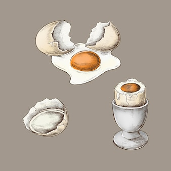 Pęknięta skorupka jajka i jajko na twardo
