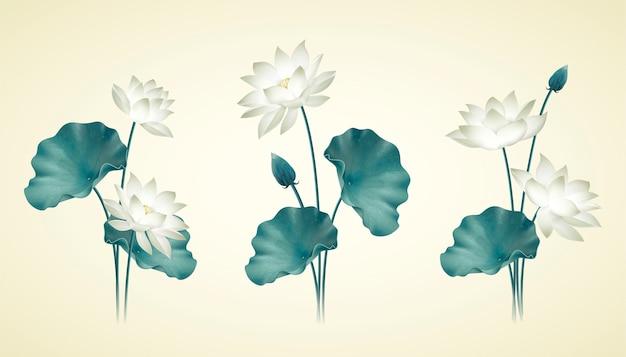 Pełen wdzięku biały lotos i kolekcja liści