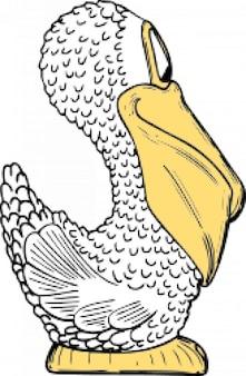 Pelikan widok z boku