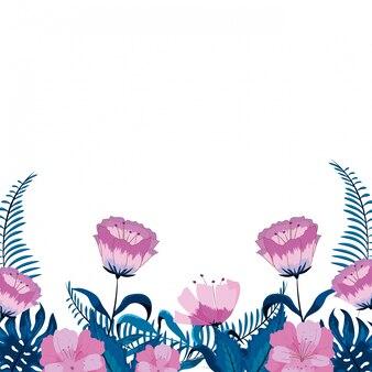 Piękno tropikalni kwiaty z gałąź liśćmi