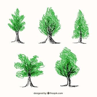 Pięć ręcznie rysowane drzewa