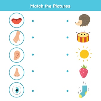 Pięć zmysłów gra dla dzieci. wzrok, dotyk, słuch, węch i smak. dopasuj stronę aktywności ze zdjęciami. nauka materiału na części ciała dla przedszkola. podręcznik dla dzieci. ilustracji wektorowych