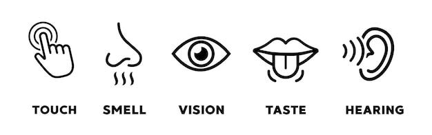 Pięć zmysłów wektor zestaw ikon. wzrok, słuch, dotyk, smak, zapach