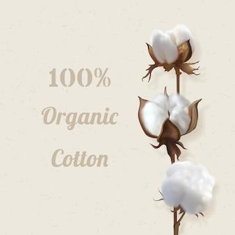 Piękna fotorealistyczna ilustracja wektorowa z gałęzi bawełny na beżowym tle