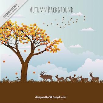 Piękna jesień krajobraz tła ze zwierzętami