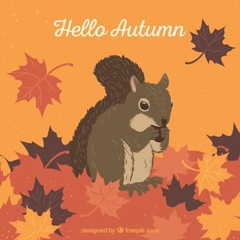 Piękna jesienna kompozycja z wiewiórką