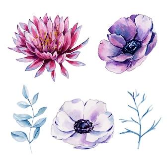 Piękna kolekcja akwarela kwiatowy i liści elementy