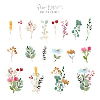 Piękna kolekcja akwarela kwiatowy ogród