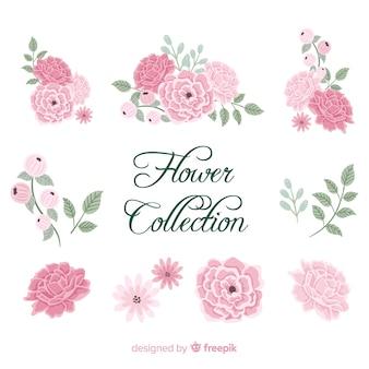 Piękna kolekcja kwiaty piwonii w rękę wyciągnąć styl