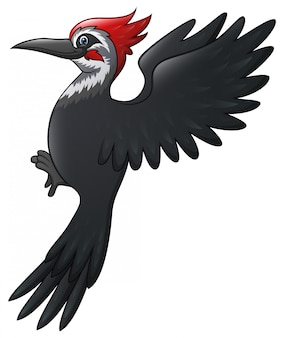 Piękna kreskówka ptak dzięcioł