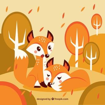 Piękna para lisów jesienią