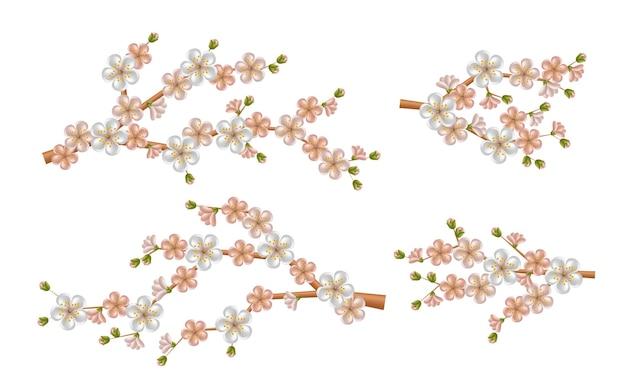 Piękna realistyczna gałąź sakury z kwitnącymi kwiatami i pąkami. wiosenny kwiat wiśni