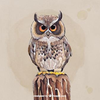 Piękna ręcznie rysowana sowa